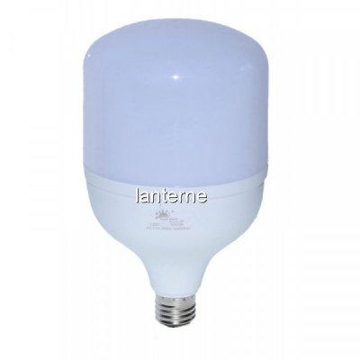 Bec LED Economic de Putere 50W 6500K Soclu E27 21x12cm 50W4332